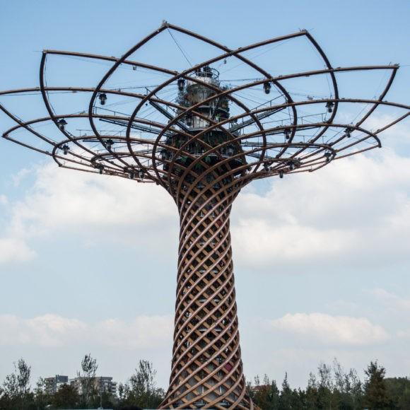 arca studios roberto cacciapaglia wild side tree of life expo milano 2015 (34)
